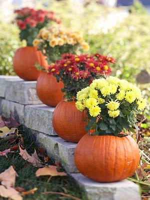 planting-mums-in-pumpkins