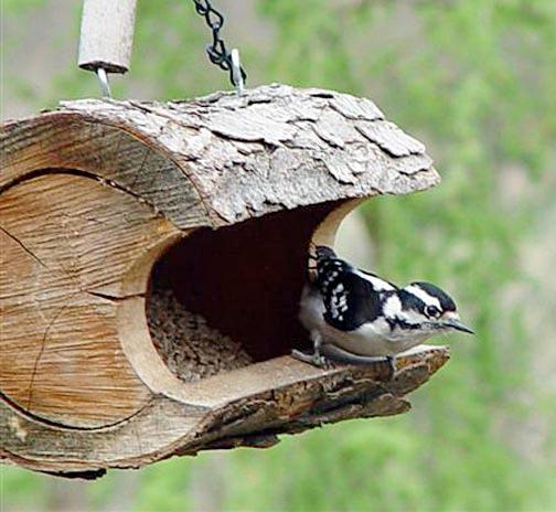 hollow-log-birdfeeder