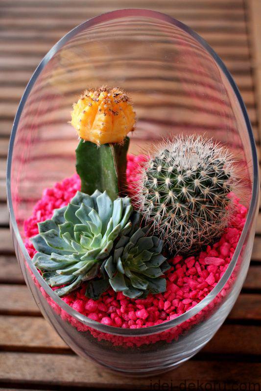 Florarium_036