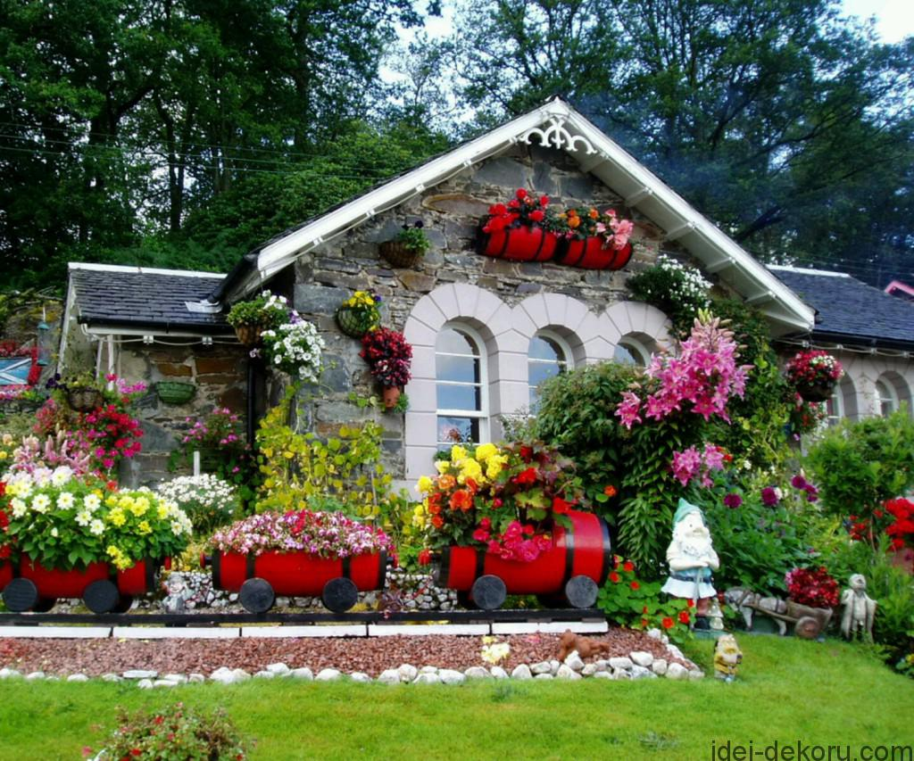 Care-Garden-Flowers-With-The-Best-Plant-Selection-Typesofflower-com-home-flower-garden-tips--1024x853