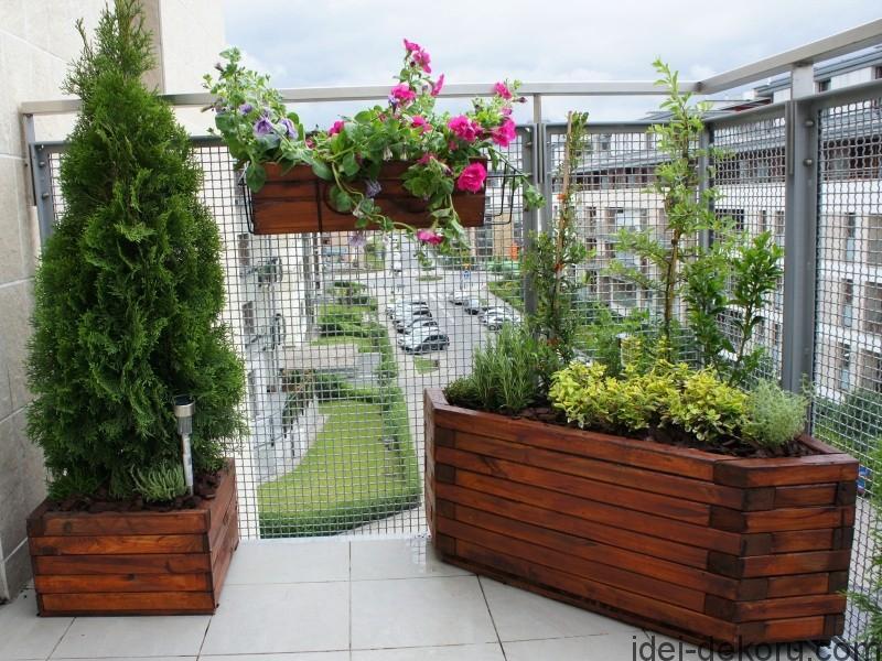 21712ogrod_na_balkonie_1