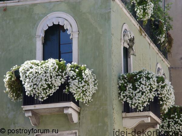 cvetuschiy-balkon-765