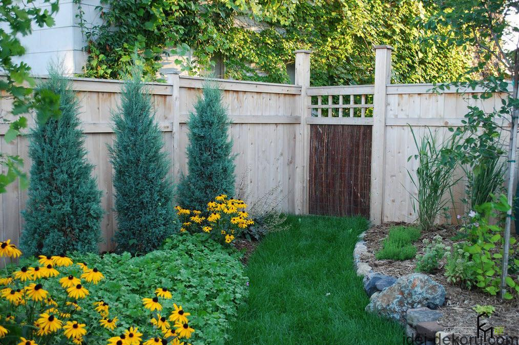 a-rustic-wooden-fencing-with-grassy-pathways-also-appealing-yellow-flowers-with-mini-pines-tree-and-stony-edging