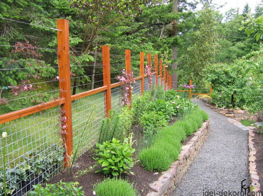 an-inspiring-wooden-fencing-with-wires-and-grey-gravel-pathways-with-boxwood-shrubs-flank-and-groundcovers-with-stony-edging-for-modern-forest-house