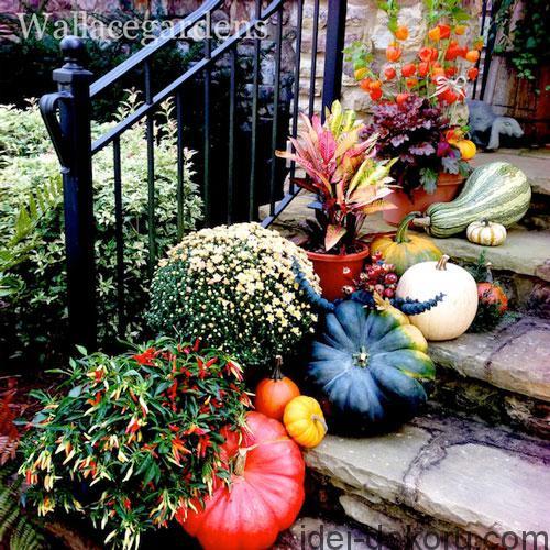 nancy-pumpkins-porch