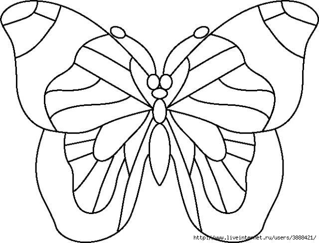 86992606_butterfly2