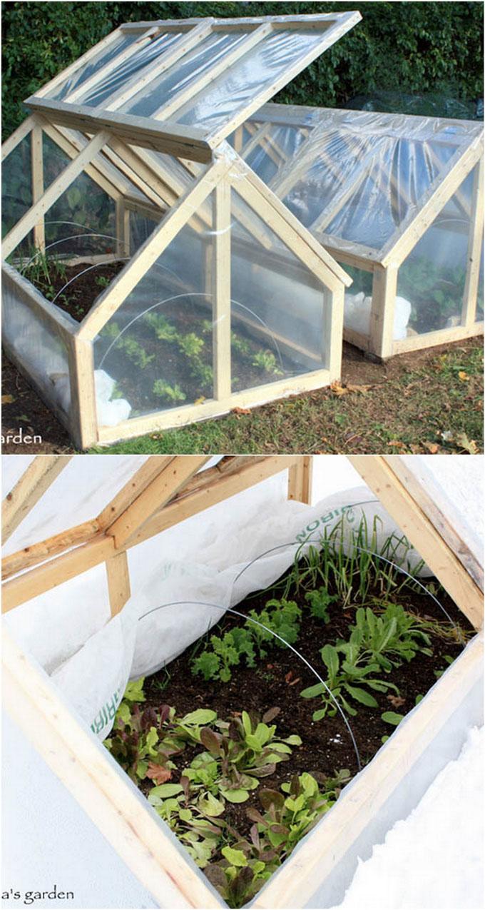 DIY-Greenhouses-apieceofrainbow-3