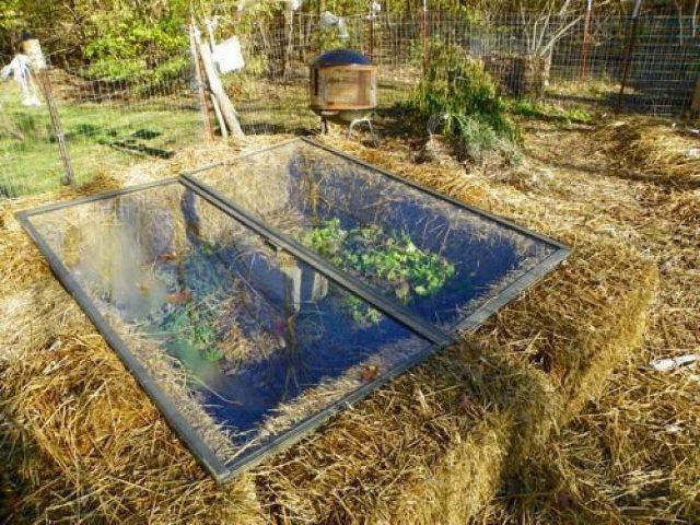 DIY-Greenhouses-apieceofrainbowblog-30