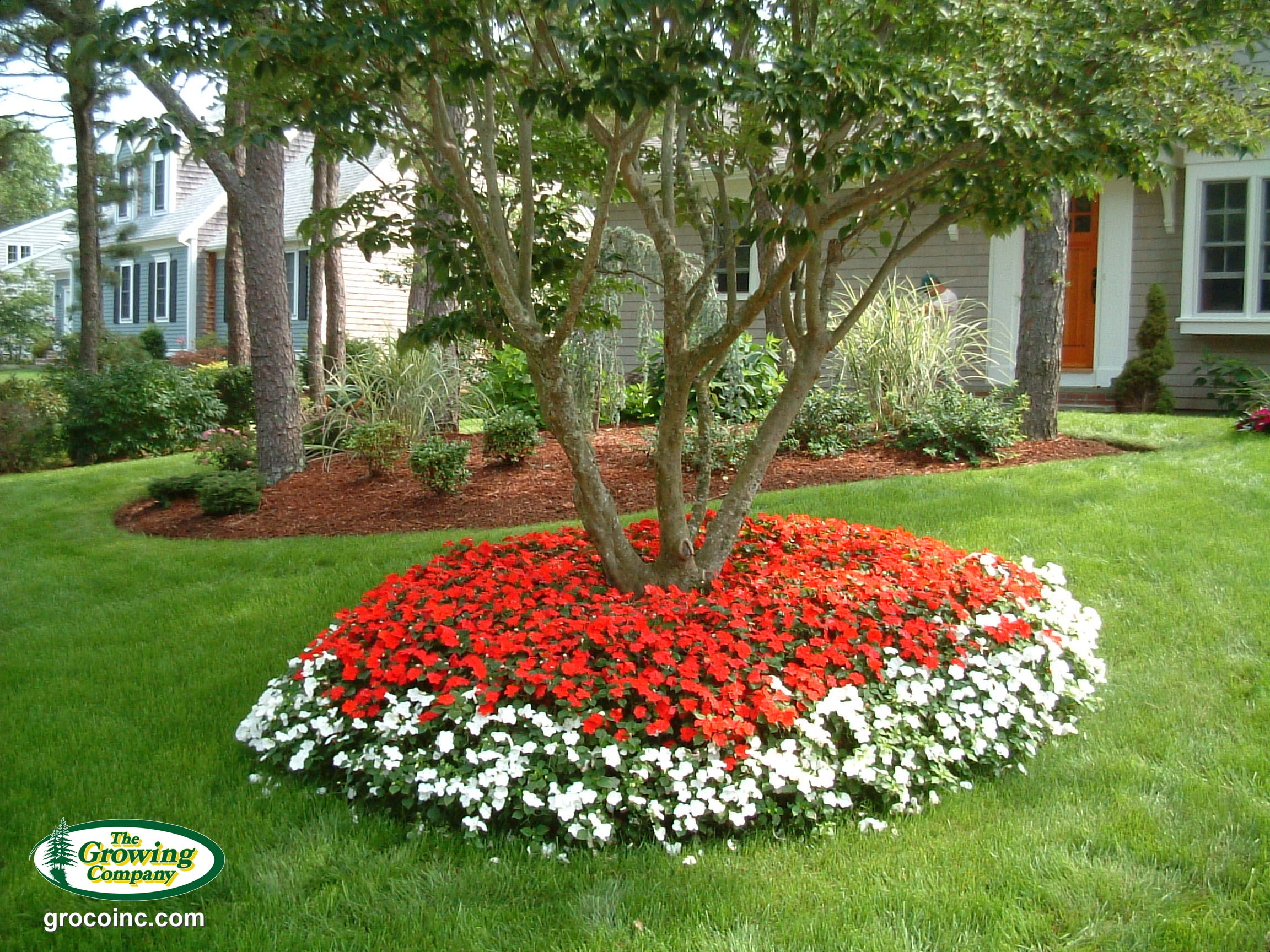 annual-flower-bed-3