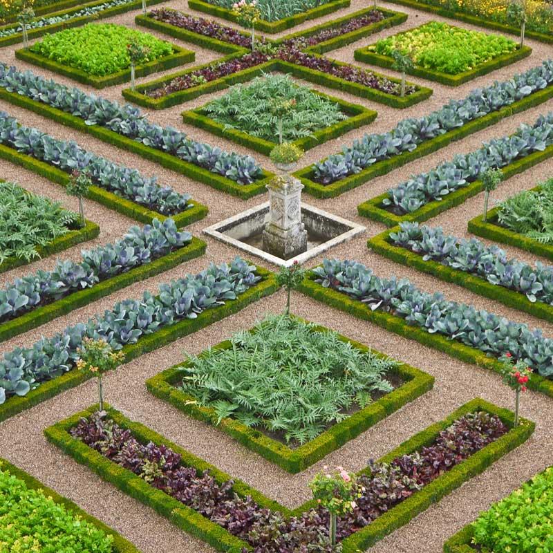 chateau_jardin_villandry_potager-17