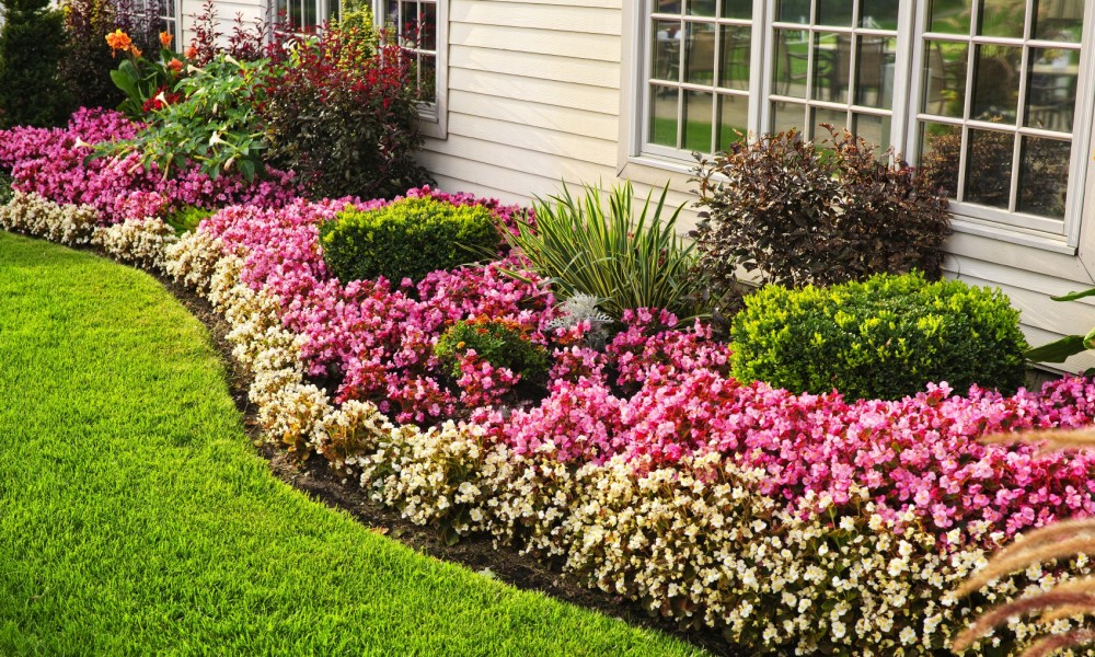 flower-bed-against-stucco-house-1000x600