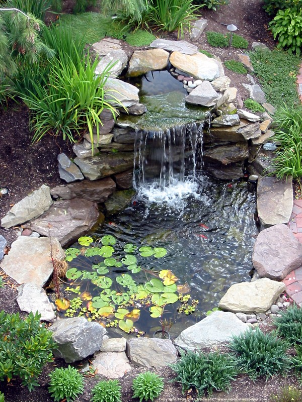 Water-Pond-11-The-ART-In-LIFE