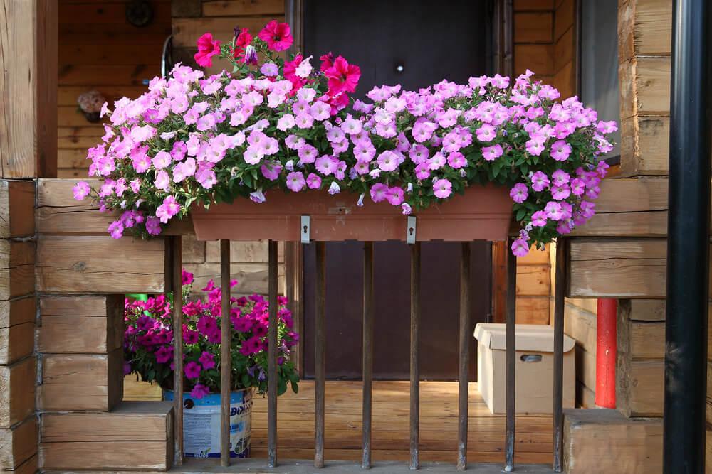 35window-flower-box