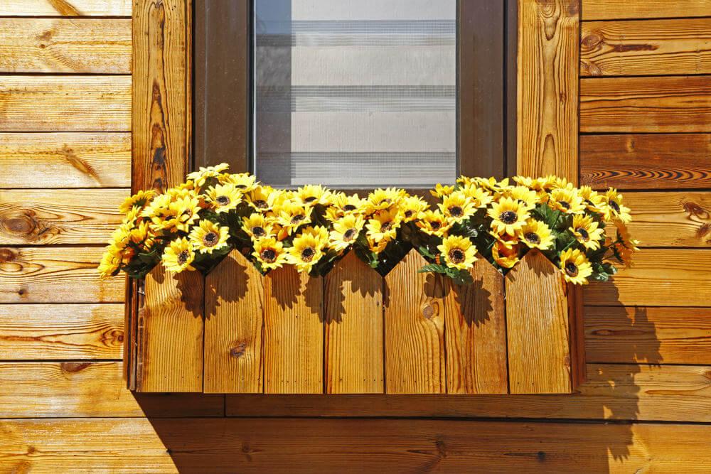 37window-flower-box