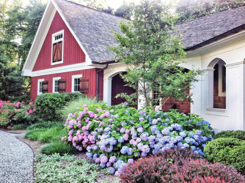3hydrangea-garden