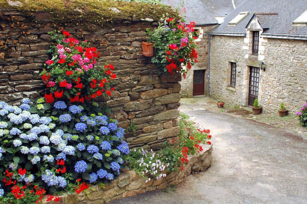 7hydrangea-garden