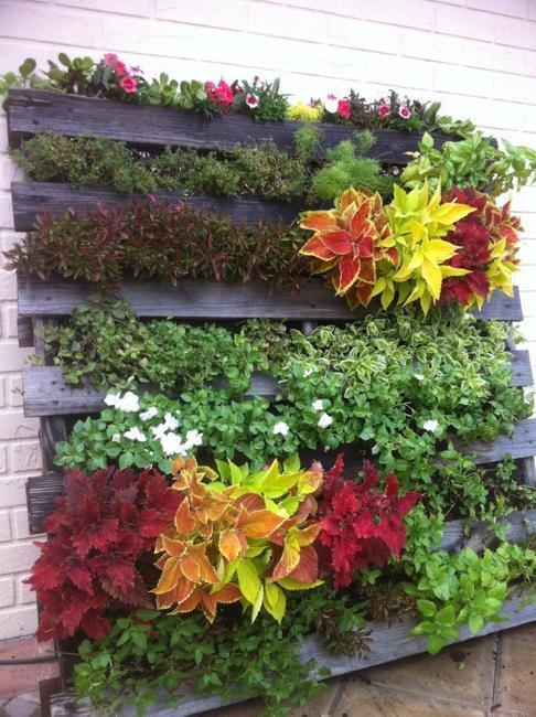 vertical-garden-design-recycling-wood-pallets-3