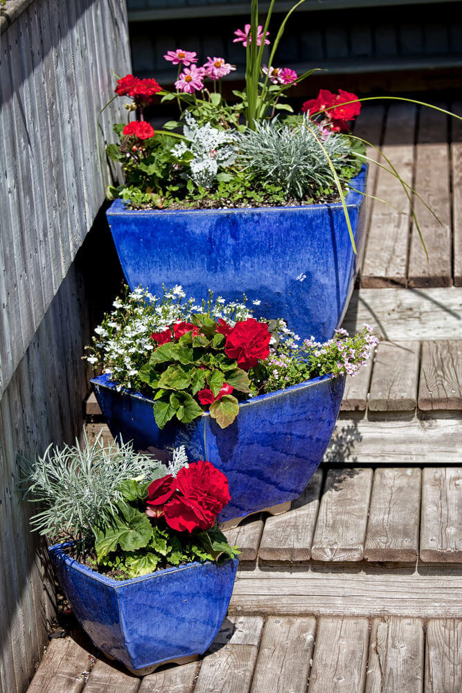 43flower-pots-on-stairs