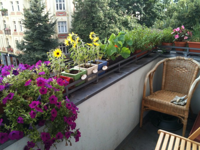 Berlin_balcony_with_flowers-e1432499910491