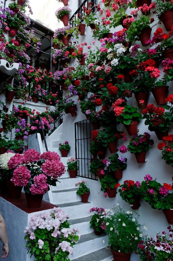 Flowers-11-The-ART-In-LIFE
