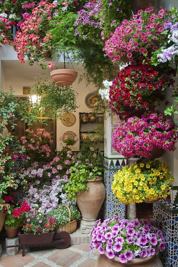 Flowers-17-The-ART-In-LIFE