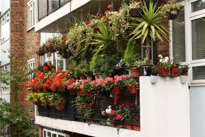 Small-Balcony-Garden-Design-with-vase-plants-and-hanging-vase-flowers