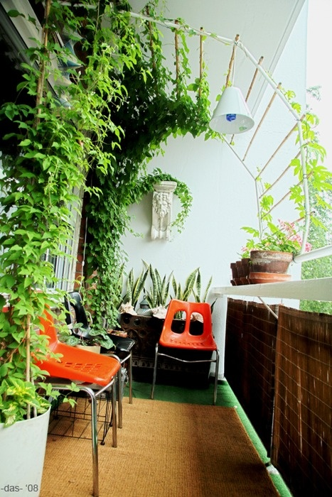 "This is my balcony garden. I want to have a canopy of greenery to have feeling of intimacy. I build the trelis with copper metal and bamboo. The 3 retro chairs ( 2 orange and 1 black) were bought @ graigslist for $20.00 The Bacchus wall sconce is a garage sale find for $5.00 1. At the front vine plant called Clematic. 2. the other vine plant is called White lace Susan. 3. On the wall are Snake Plant better known as ""Mother-in-Law's Tongue"". 4. On the lead are Geranium. 5. The climbing plant at the rail are  vegetable plant called ""Bitter Melon"""
