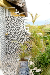 outdoor-shower-dpages-blog-a