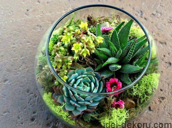 Florarium_013