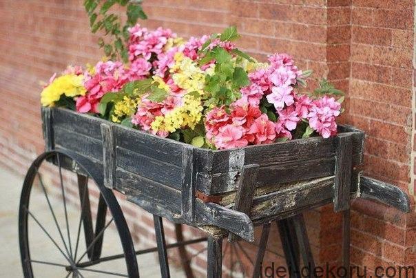И целая телега цветов... Идеи для красивого сада