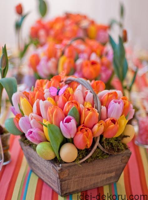 vesennie-cvety-fotografii-vesennih-cvetov-dekor (11)