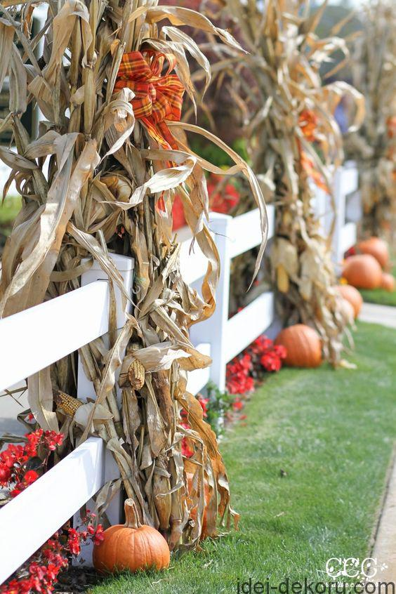 20-outdoor-fence-decor-with-corn-stalks-and-plaid-bows