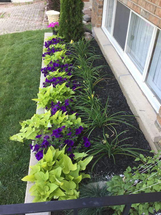 Квітники навколо дому простий спосіб облагородити фасад