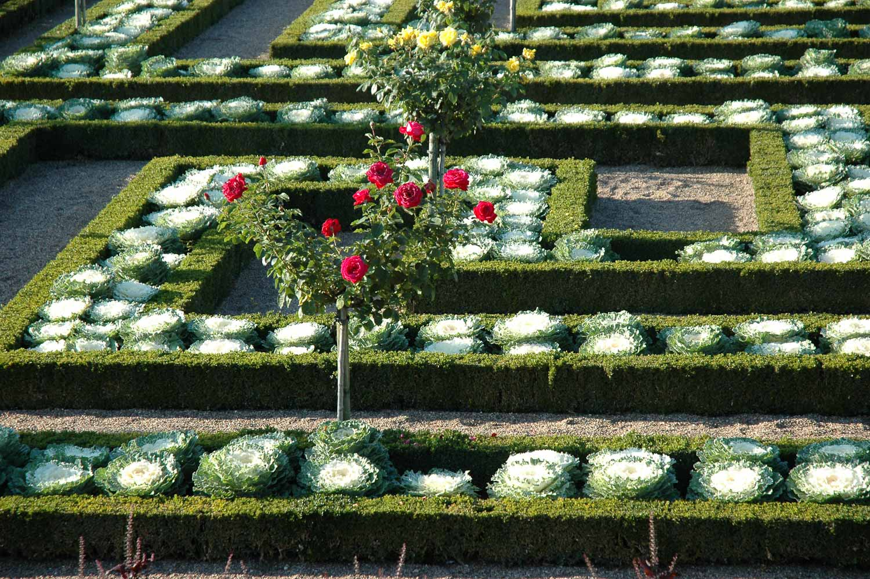 chateau_jardin_villandry_potager-13