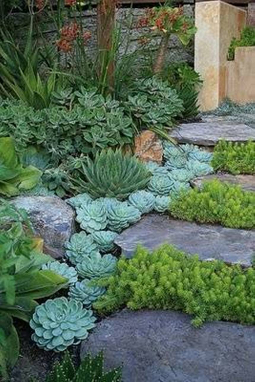 garden-rockery-with-succulent