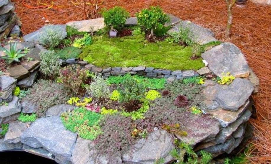 miniature-garden-rockery