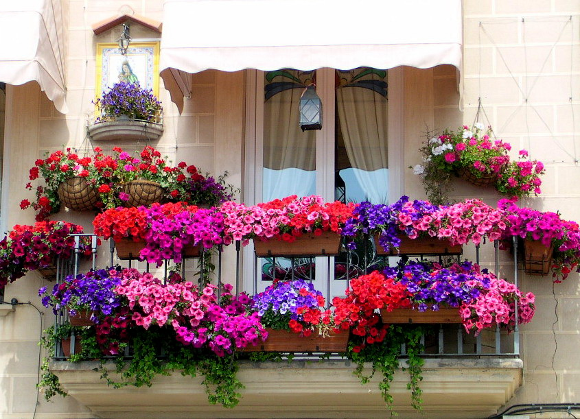 13-balcony-garden-italian-flair-homebnc