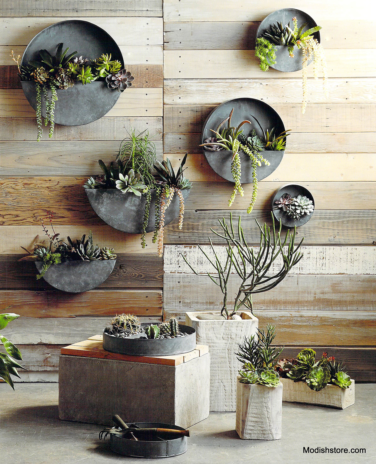 25-muted-round-zinc-planters-allow-plants-to-shine-vertical-gardens-homebnc