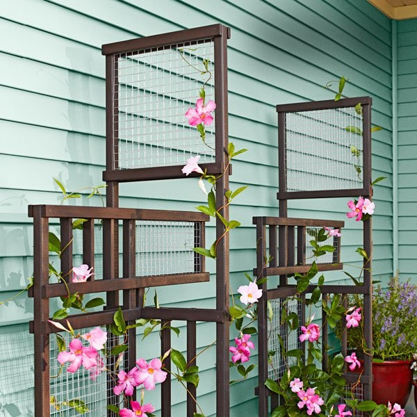 Trellis3-The-art-in-life