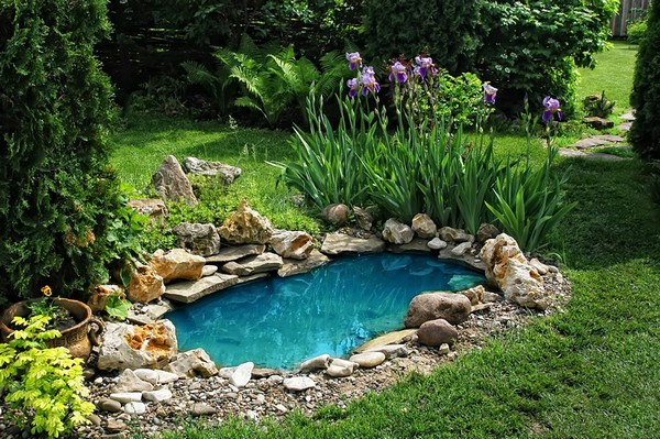 Water-Pond-16-The-ART-In-LIFE