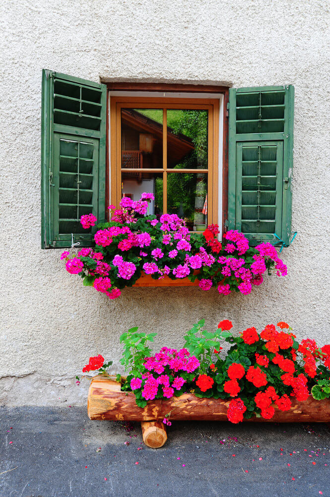 11window-flower-box