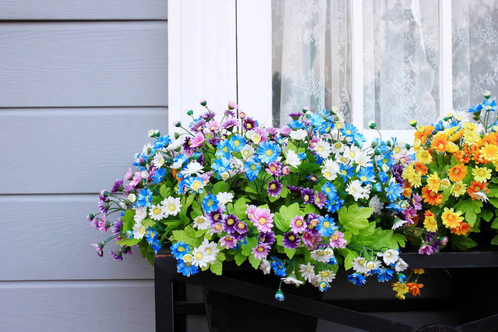 14window-flower-box