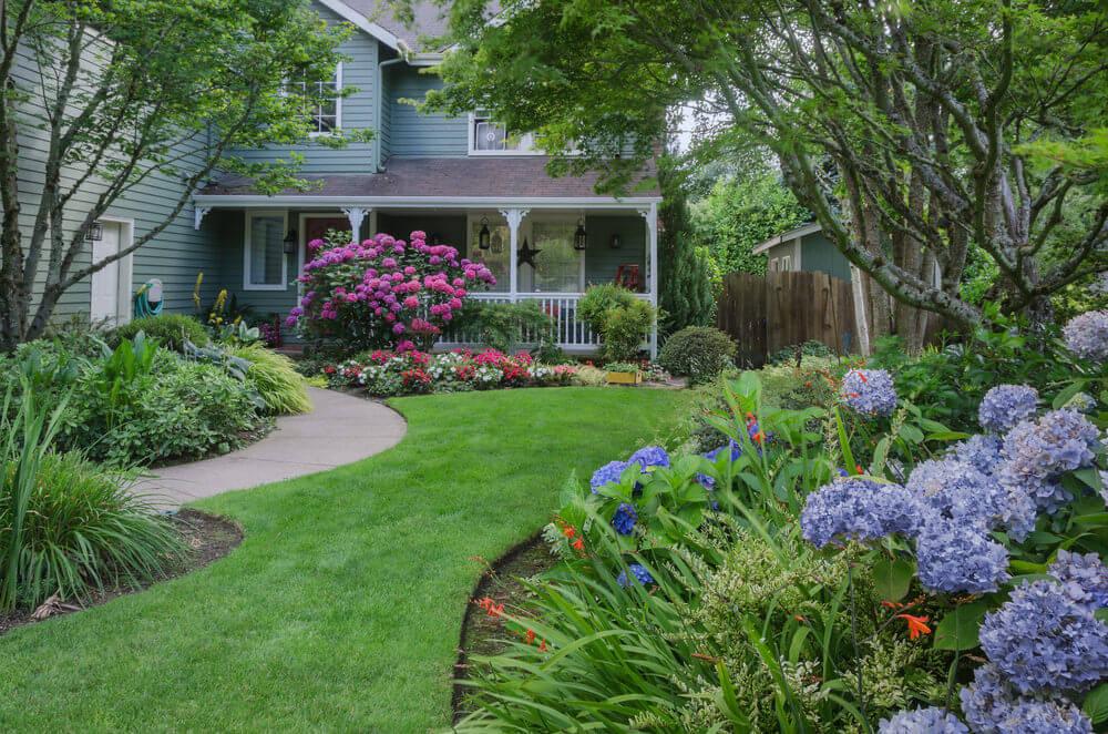 19hydrangea-garden
