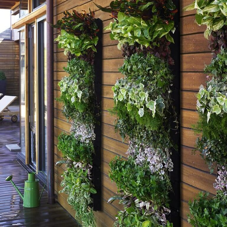 1z-vertical-garden
