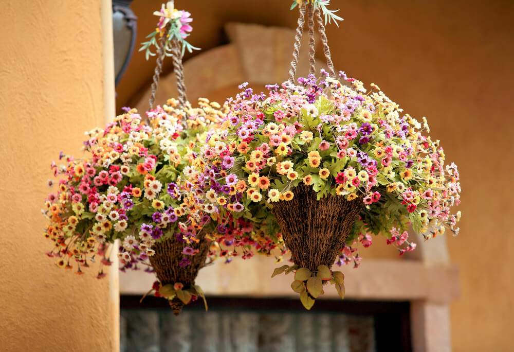 20hanging-basket-flowers