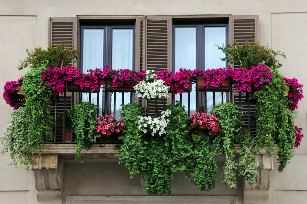 27window-flower-box