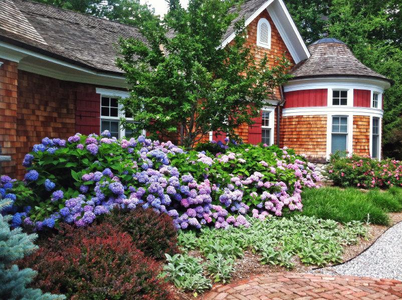 2hydrangea-garden