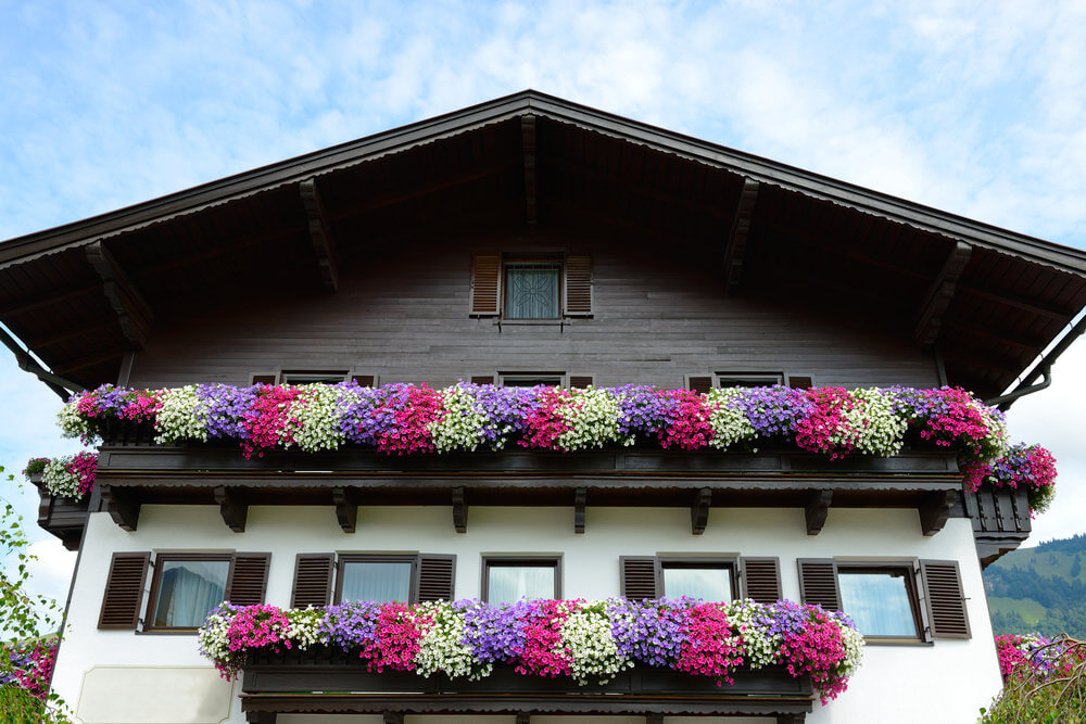 31window-flower-box