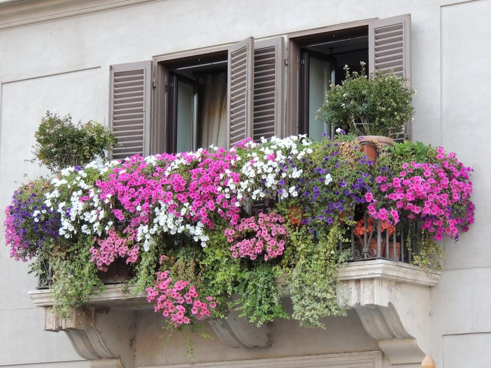 38window-flower-box