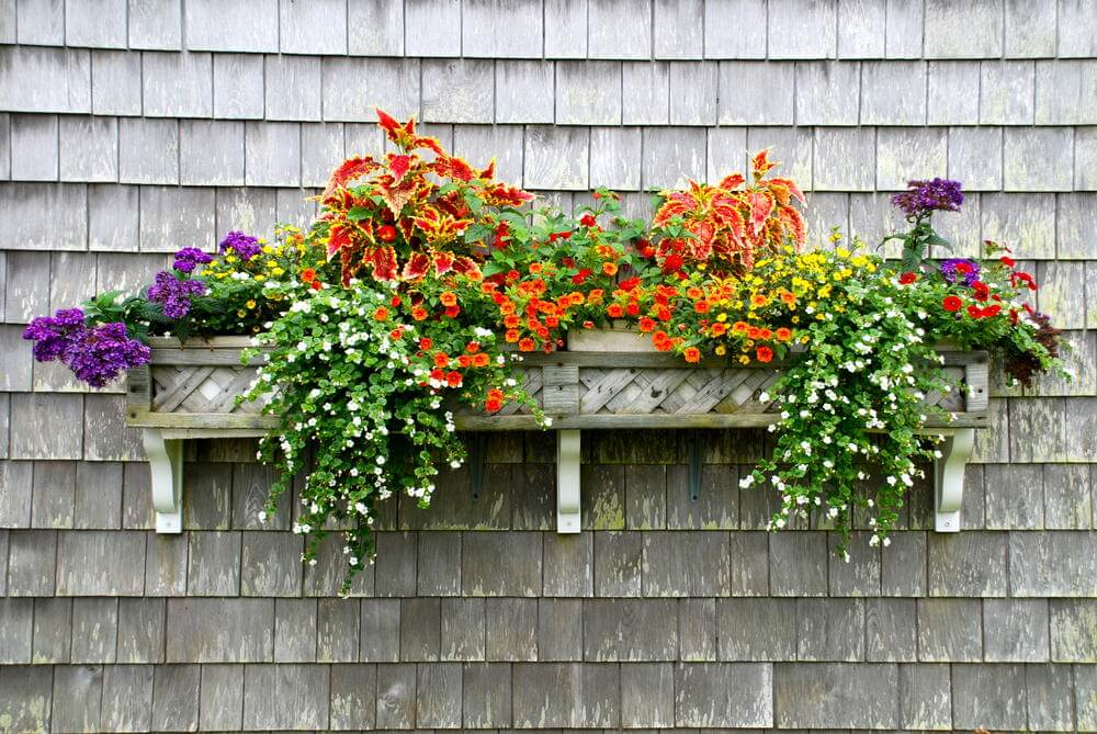 7window-flower-box